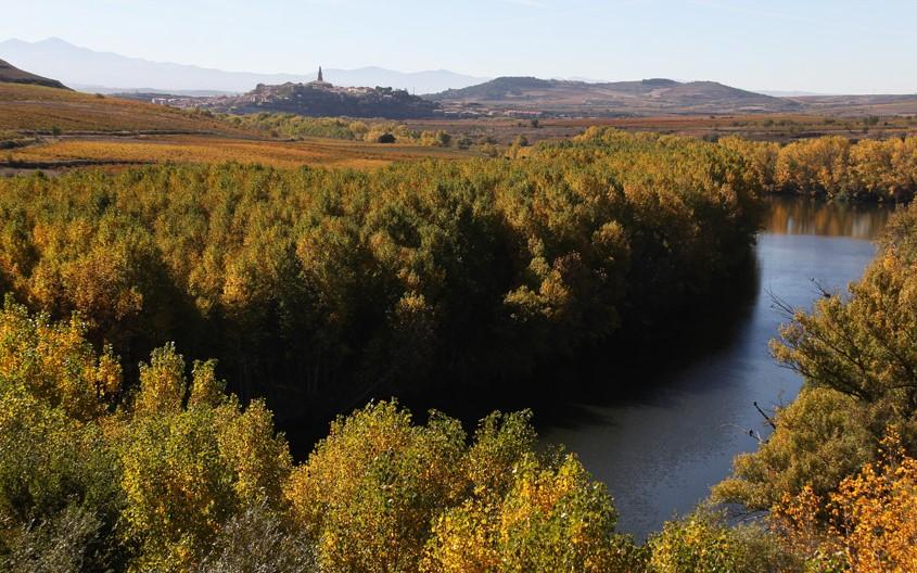 23 octubre | Ruta por el Sendero del río Ebro desde San Asensio